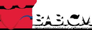 babicm-logo